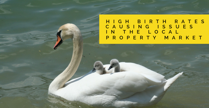Birth Rate and The Hazel Grove Property Market